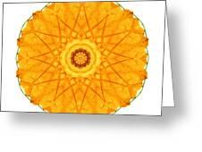 Orange Nasturtium I Flower Mandala White Greeting Card