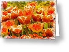 Orange Princess Fringed Tulips Greeting Card