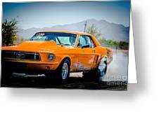 Orange Racing Mustang Greeting Card