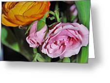 Orange Ranunculus And Pink Roses Greeting Card