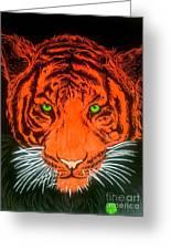 Orange Tiger Greeting Card