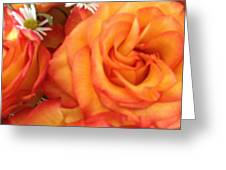 Orange Utopia Roses Greeting Card