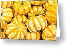 Orange Winter Squash On Display Greeting Card
