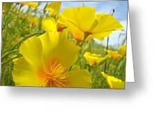 Orange Yellow Poppy Flowers Meadow Art Greeting Card