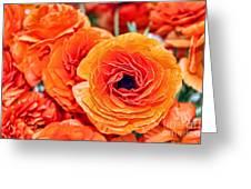 Orange You Happy Ranunculus Flowers By Diana Sainz Greeting Card