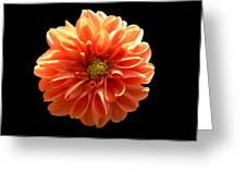 Orangeman Greeting Card