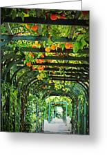 Oranges And Lemons On A Green Trellis Greeting Card