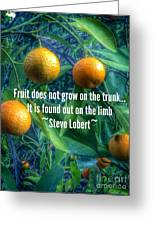 Oranges On A Limb Quote   Greeting Card