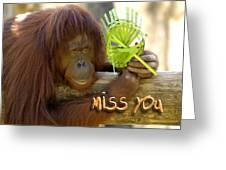 Orangutan Female Greeting Card
