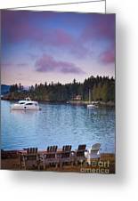 Orcas Viewpoint Greeting Card
