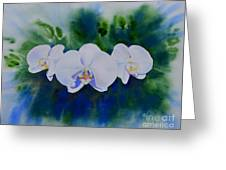 Orchid Blast Greeting Card