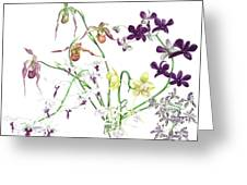 Orchid Bouquet Greeting Card