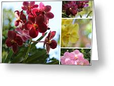 Orchid Collage Greeting Card