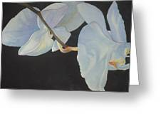Orchid Dance II Greeting Card