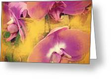 Orchid Dream Greeting Card