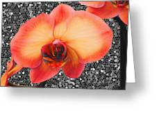 Orchid Explosion Greeting Card