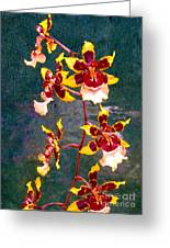 Orchid Spray By Pottery  Greeting Card