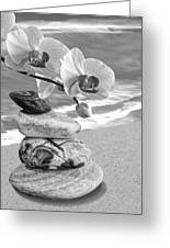 Orchids And Pebbles On The Sand In Black And White Greeting Card