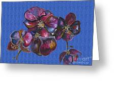Orchids Blue Greeting Card