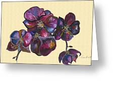 Orchids Cream Greeting Card