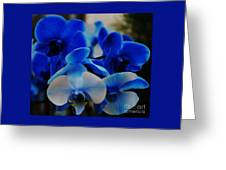 Orchids In Blue  Greeting Card