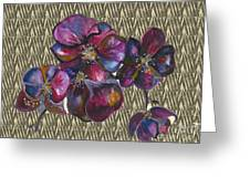 Orchids Zebra Greeting Card