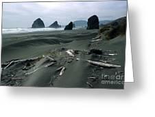 Oregon Coast 2 Greeting Card