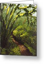 Oregon Forest Trail Greeting Card