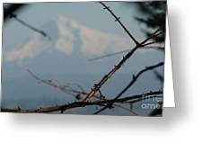 Oregon Nature Frames Mountain Greeting Card