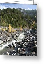 Oregon Wilderness II Greeting Card
