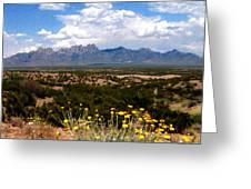Organ Mountain Splendor Greeting Card