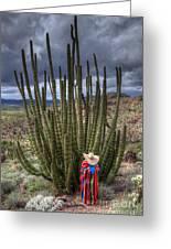 Organ Pipe Cactus The Visitor 1 Greeting Card