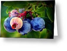 Organic Blues Greeting Card