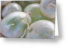 Organic Onions Greeting Card