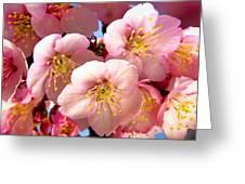 Oriental Flowers Greeting Card