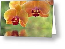 Oriental Spa - Square Greeting Card