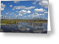 Orlando Wetlands Cloudscape 3 Greeting Card
