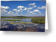 Orlando Wetlands Park Cloudscape 4 Greeting Card