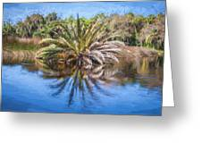 Ormond Scenic Loop Florida Palm Tree Painted  Greeting Card