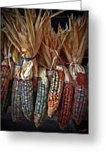 Ornamental Corn Greeting Card