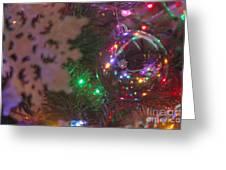 Ornaments-2096 Greeting Card