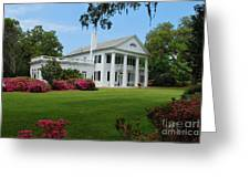 Orton Plantation Greeting Card