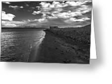 Osar Beach Iceland Greeting Card