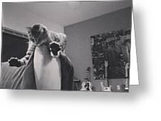 Oskar Super Cat Greeting Card by Mick Szydlowski