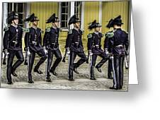 Oslo Royal Palace Guards Greeting Card