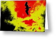 Osprey In The Sky Greeting Card