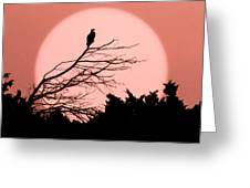 Osprey Moon Greeting Card