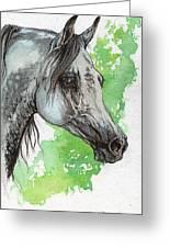 Ostragon Polish Arabian Horse Painting 1 Greeting Card