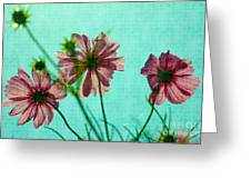Otherworldly Cosmos Flowers In Pink And Green Greeting Card