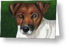 Otis Jack Russell Terrier Greeting Card